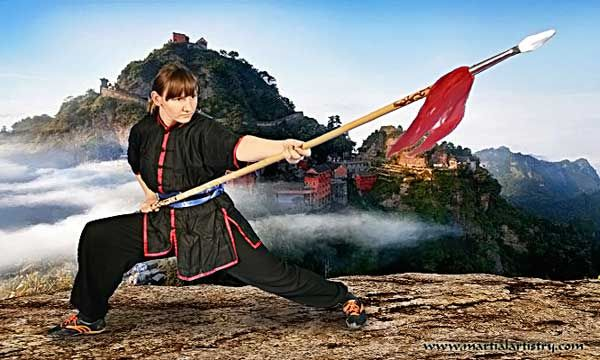 Image result for chinese spear pose | fighting pose | Karate