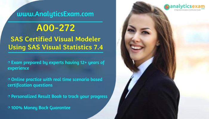 sas exam modeler visual career path