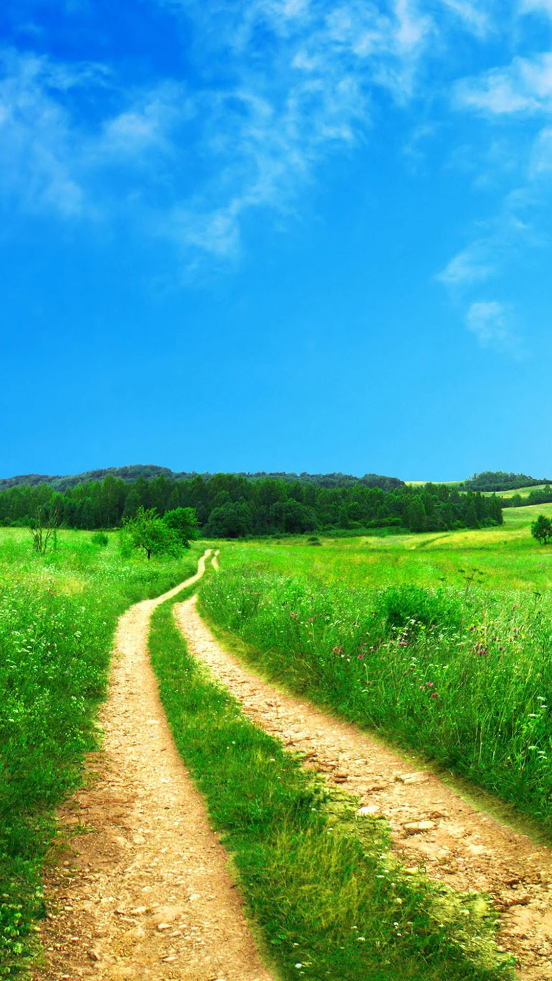 Summer Fields Wallpapers Download at