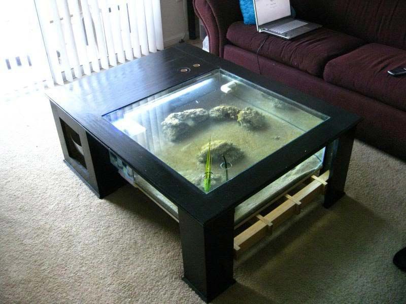 Visit The Post For More Aquarium Tables Pinterest Cheap Fish - Fish tank coffee table cheap