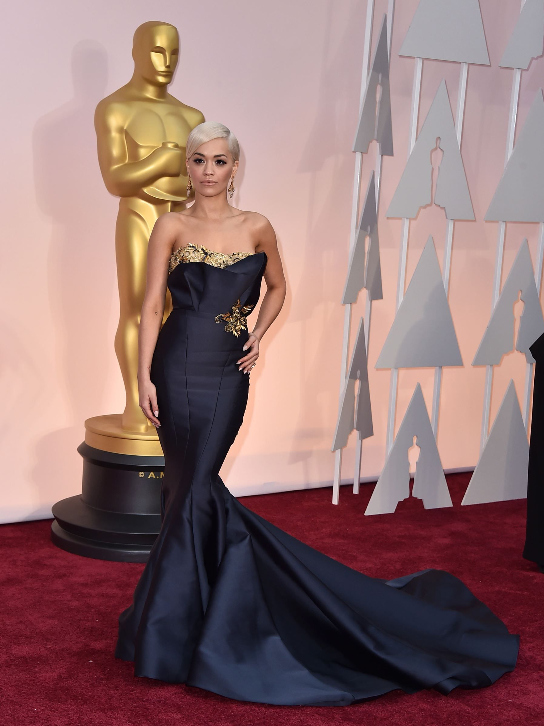 6557a8cd5c Rita Ora -2015 Academy Awards Red Carpet...What to make a statement   Imagine this in bridal fabric with embellishments that fits your style.