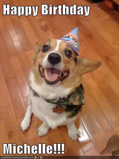 Happy Birthday Michelle Funny Animal Memes Puppies Funny Cute Dogs