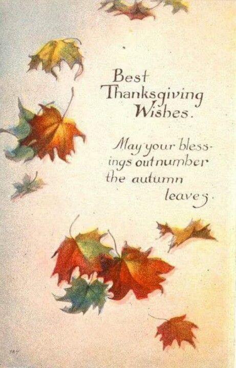 Thanksgiving blessings fall pinterest thanksgiving blessings thanksgiving blessings m4hsunfo
