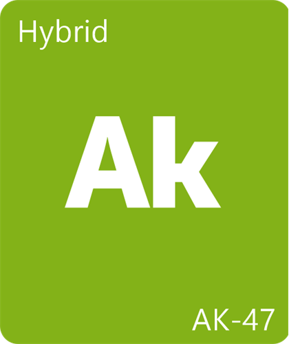 AK47 #Leafly #MyLeaf #StrainOfTheDay