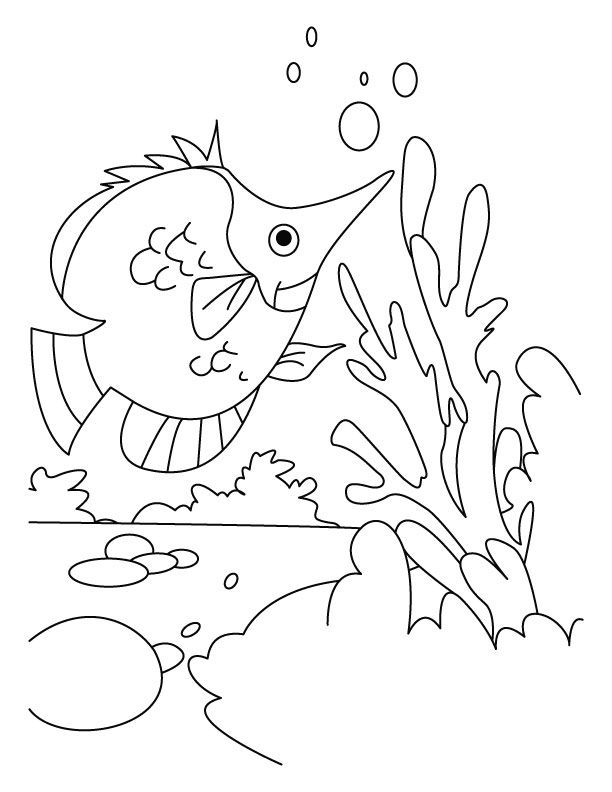 Fish Hunting Her Dish Coloring Pages