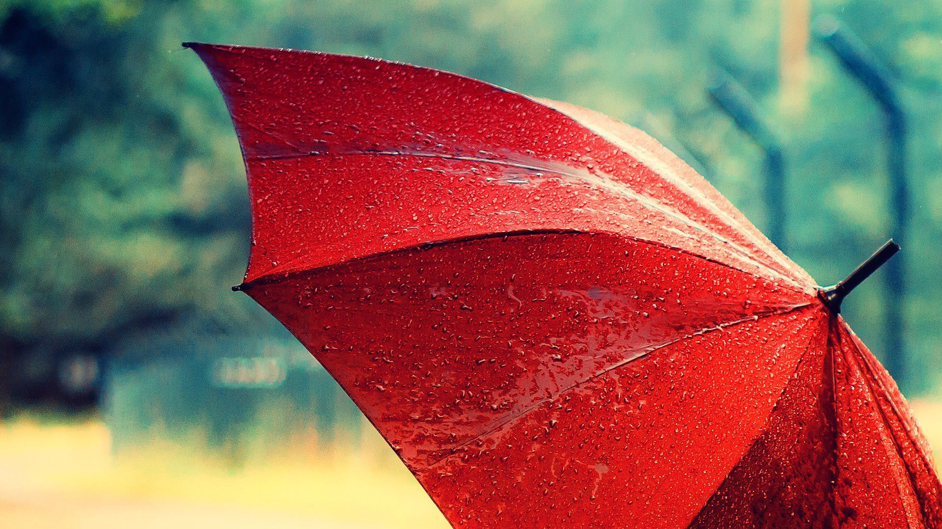 Pin By Anne Comer On R D Rain Wallpapers Red Umbrella Umbrella