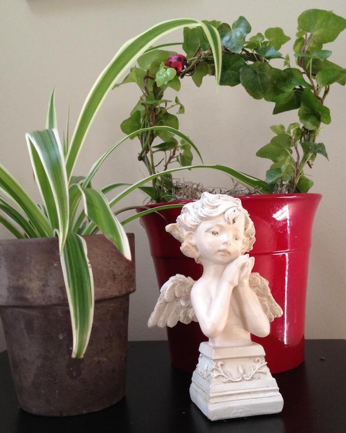 Incroyable Zwei Blumentöpfe Mit Pflanzen Für Dunkle Räume Und Eine Entzückende Engel  Skulptur