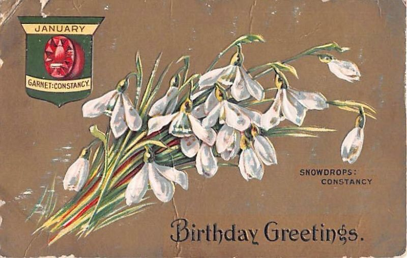 January Snowdrops Garnet Happy Birthday Greetings Vintage Antique Card Zodiac Flowers Chinese