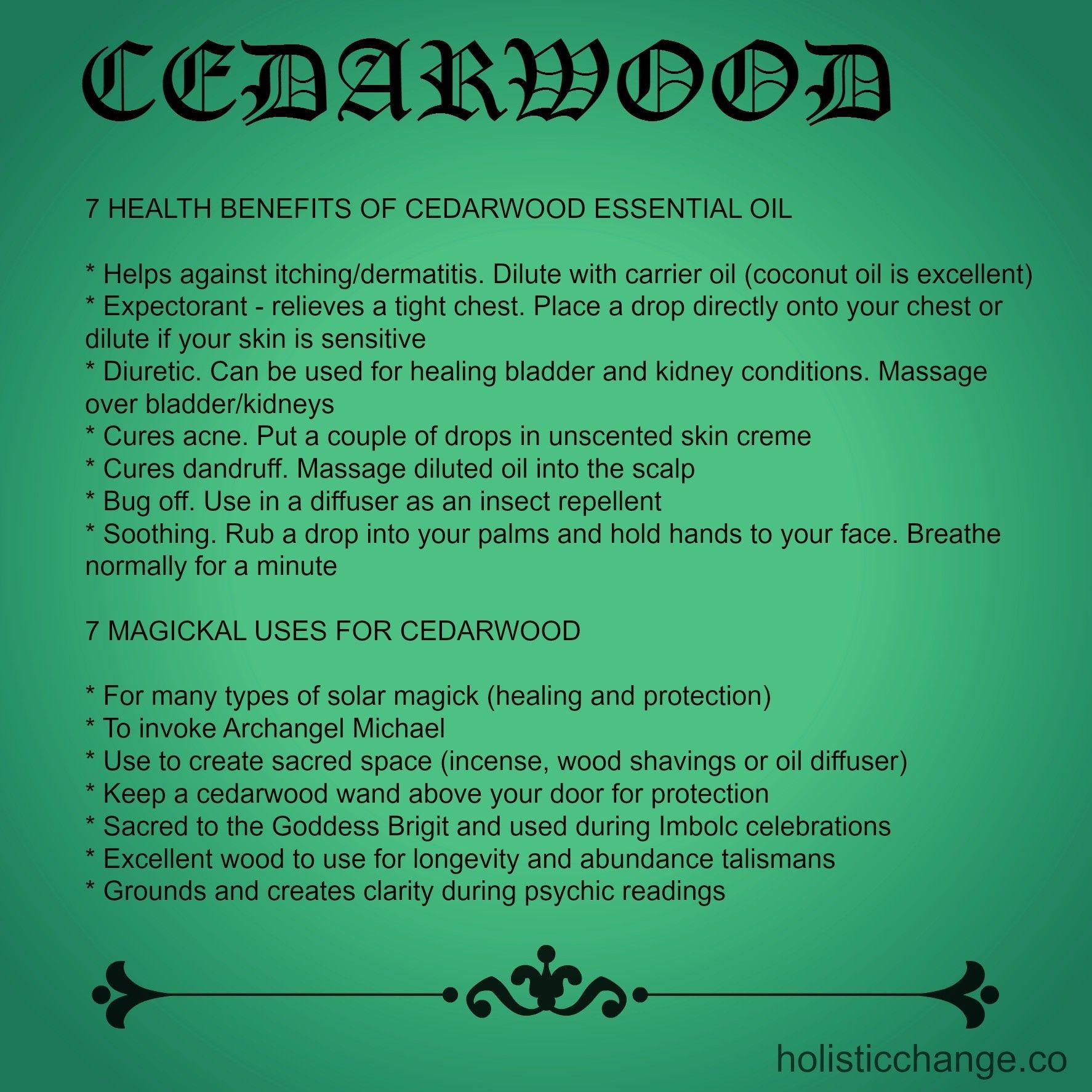 Cedarwood - 7 Health Benefits and 7 Magickal Properties