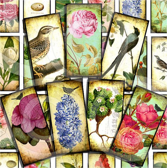 Instant Download #219. 2 X 4 inch rectangles for Gift Tags Magnets WHIMSICAL BIRDS Printable Digital Collage Sheet Paper Crafts 24