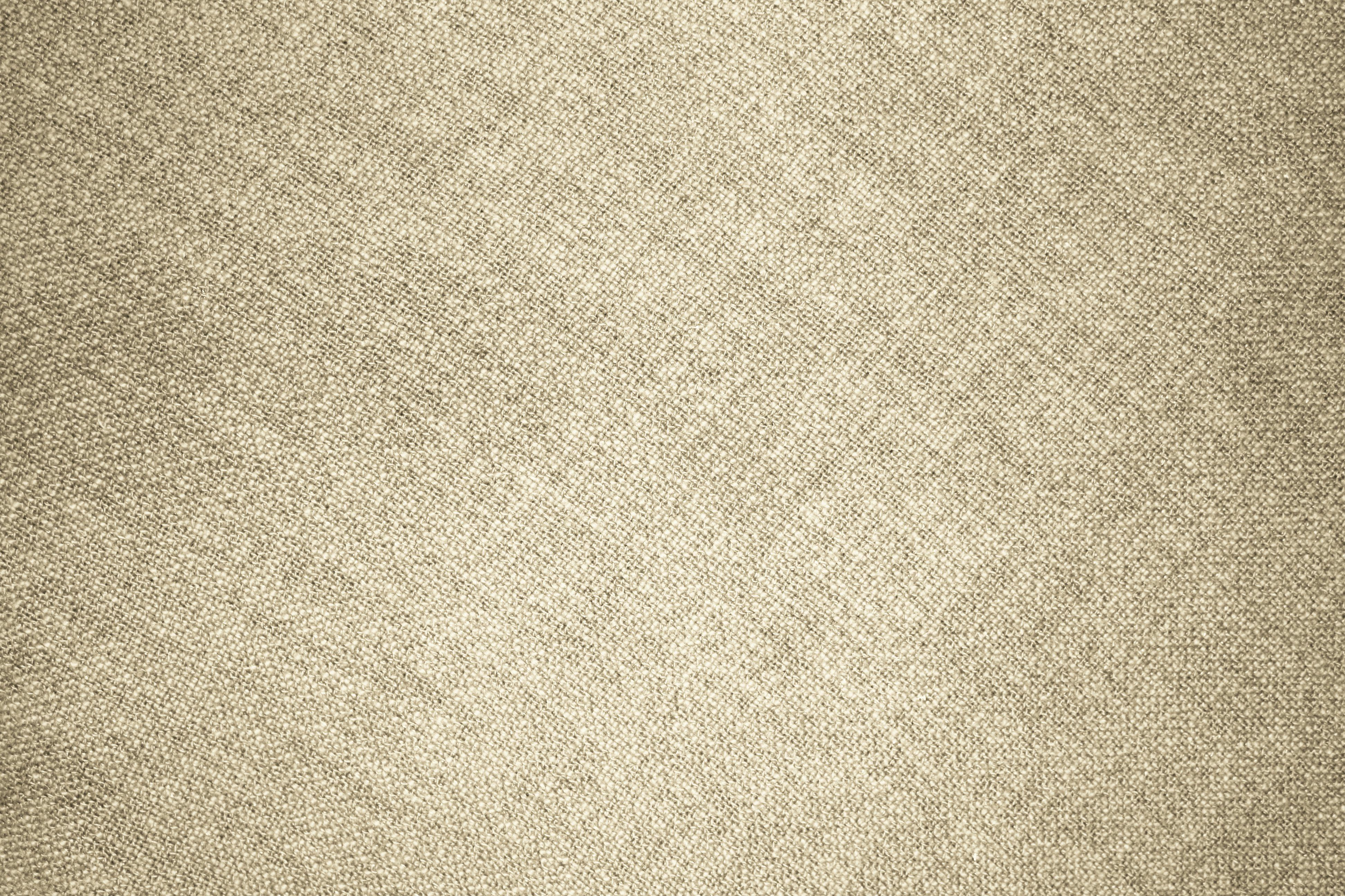 Paper or fabric beige texture Vector Image of Backgrounds Textures