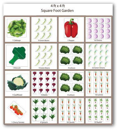 Sample square foot vegetable garden plan garden pinterest garden planning vegetable - Square meter vegetable garden ...