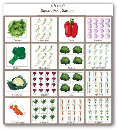 Sample Square Foot Vegetable Garden Plan | Garden | Pinterest ...