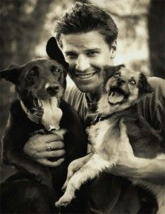 David Boreanaz + 2 dogs (Damn, gotta find me a man like this!)
