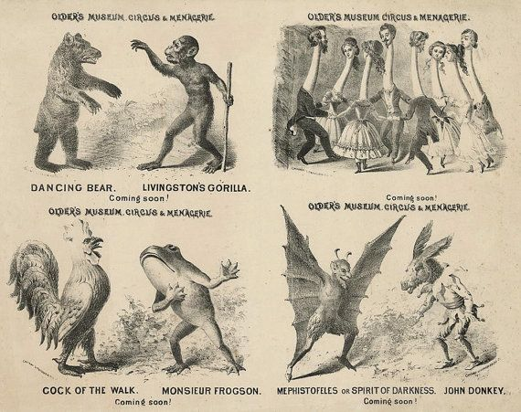 Antique Circus Poster  Older's Museum Circus by BlueMonoclePrints, $23.00