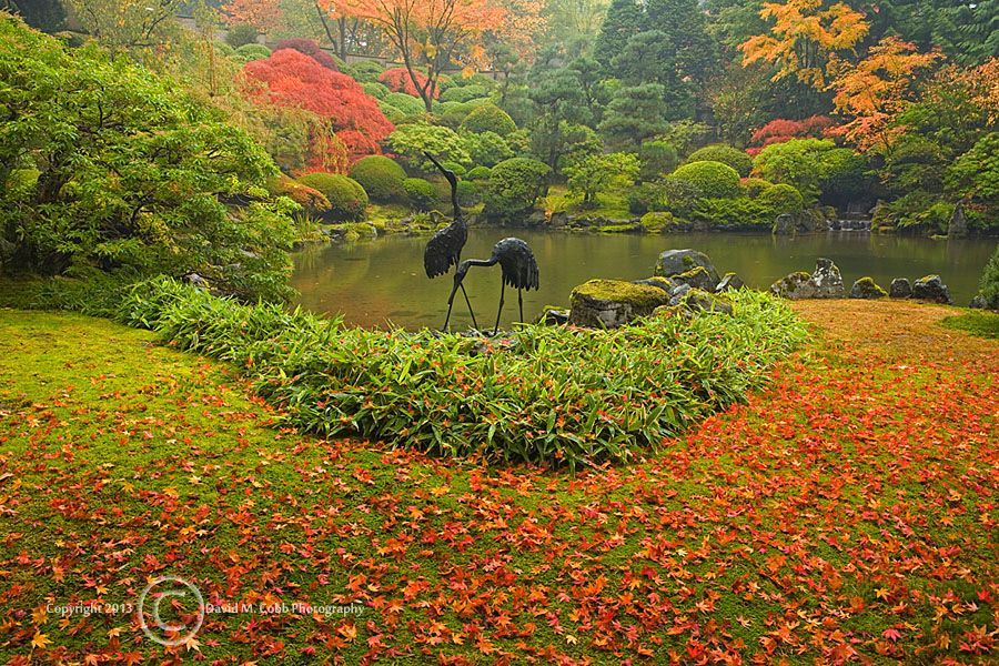 Cranes along the Upper Pond at the Portland Japanese