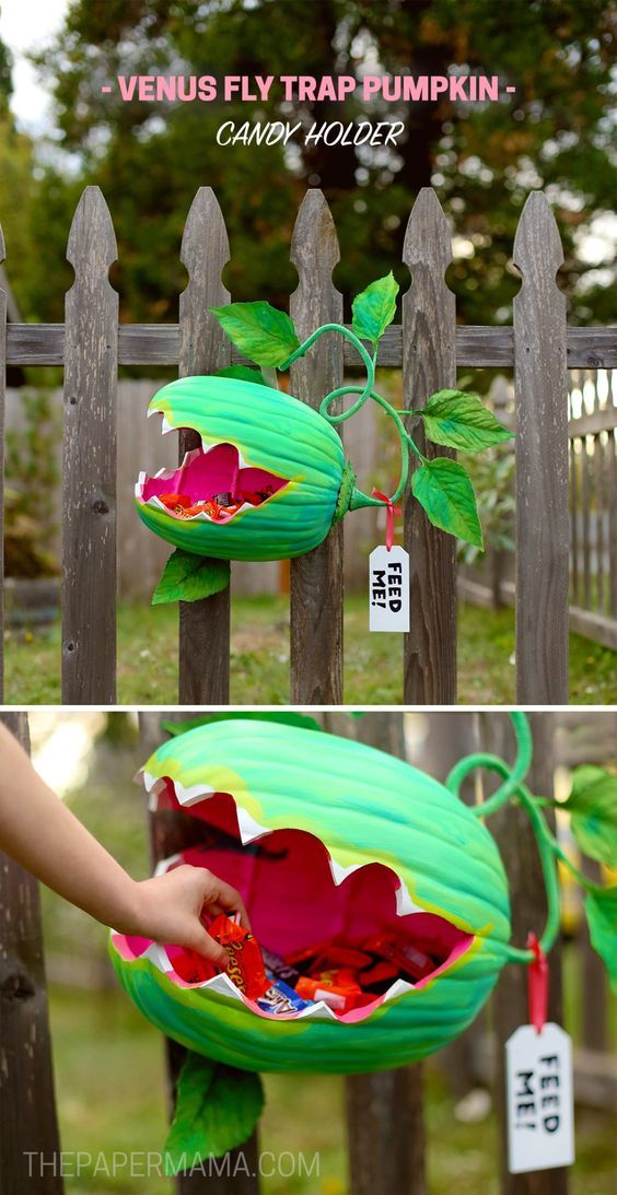 Venus Fly Trap Pumpkin Candy Holder DIY - The Paper Mama