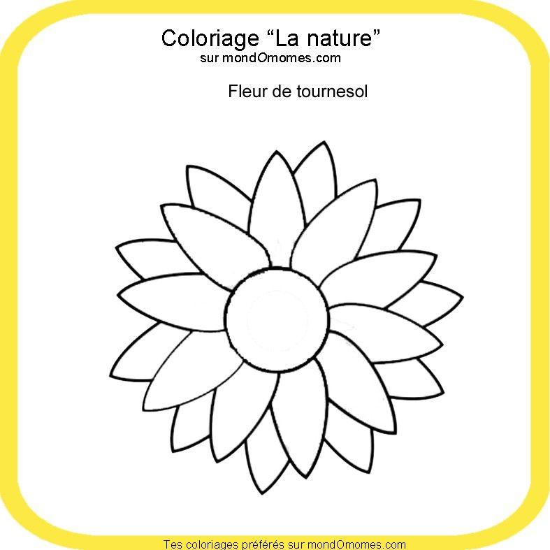 Coloriage fleur de tournesol anniversaire f te givr e - Coloriage fleur 8 petales ...