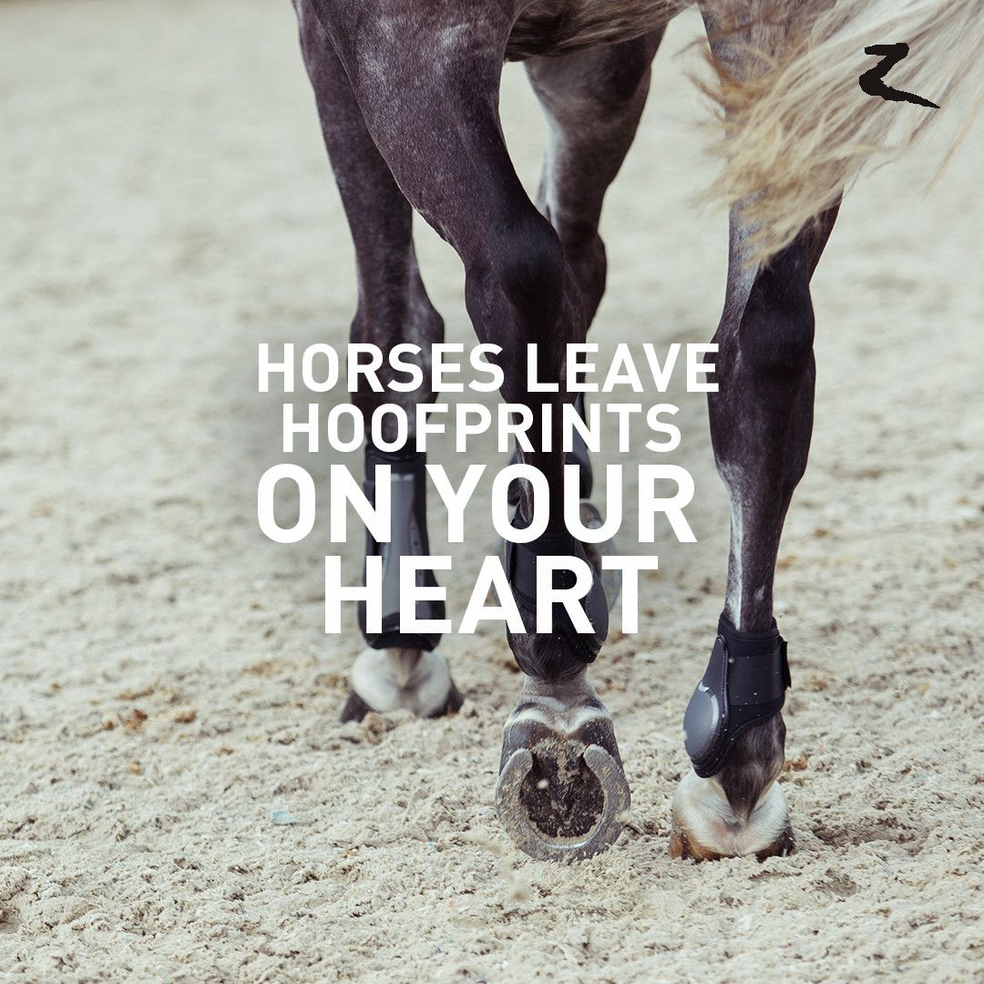 Horses leave hoofprints on your heart. | A Equestrian ...