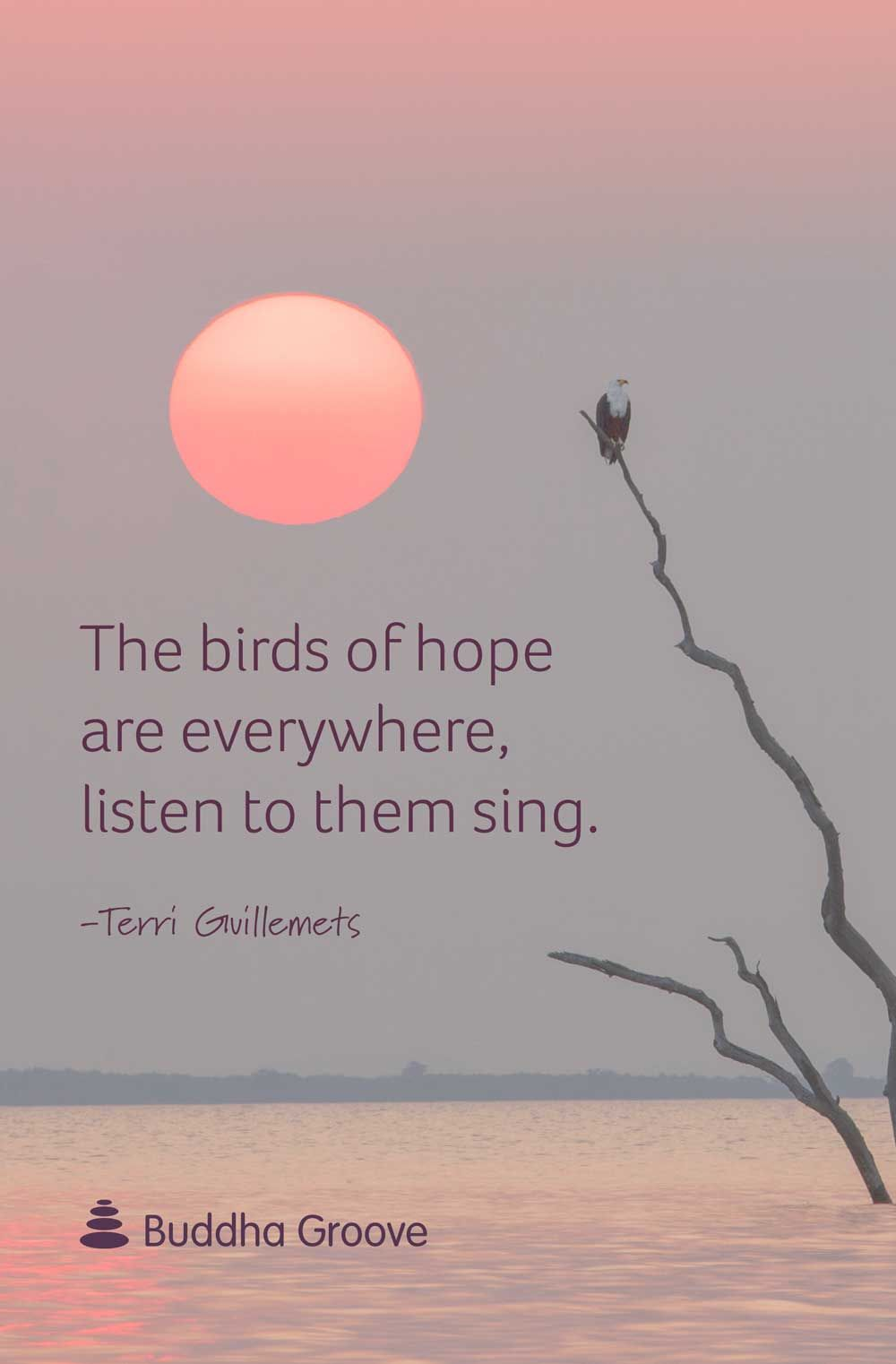 3 Quotes About Hope Hope Quotes Singing Quotes Singing Quotes Funny
