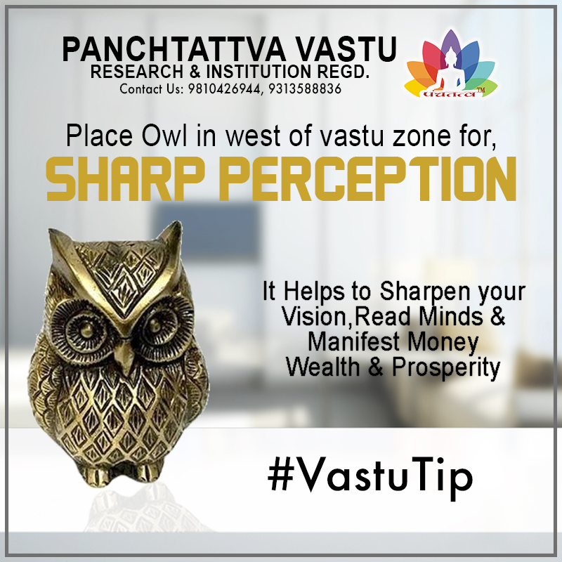 #vastutip want sharp perception ? won't be able judge it properly come and consult with vastu technocrat Naresh Mittal Or  Join, Panchtattva Vastu Course  Starting this 7th March 2020 Timings: 11am to 2pm In Delhi  #vastu #panchvastu #Hardwork #Vastutip #Vastuguru #vastuforall #panchvastunation #5elementsvastu #vastushastra #TrendingVastu #VastuisLife #Work #WorkingWorld #Naresh #BestVastuConsultant #Vastu #Vaastu #panchtattvavastu #VastuTips #nareshmittal #vastuforall #vastuismust #mevastu
