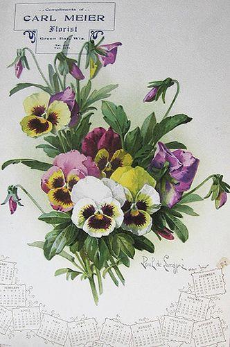 Paul de Longpré Calendar Flowers | Flickr - Photo Sharing!