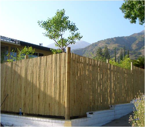 privacy fence landscaping ideas bamboo fence design ideas interior and exterior design