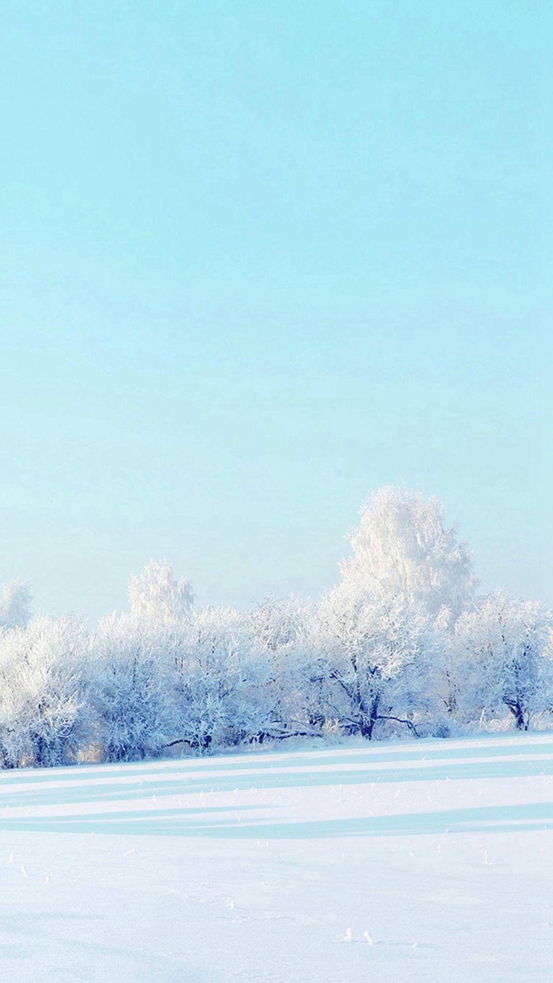Pure Winter Static Snow Field White World Iphone 6 Plus