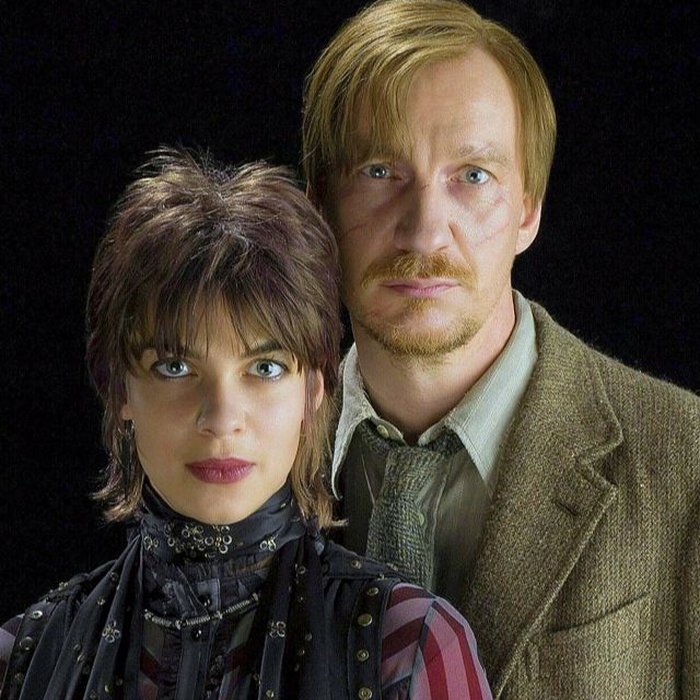 HP 30 Day Challenge: Day 12- your favorite pairing- My favorite canon pairing is Remus and Tonks. Despite their differences and troubles, they still found love.