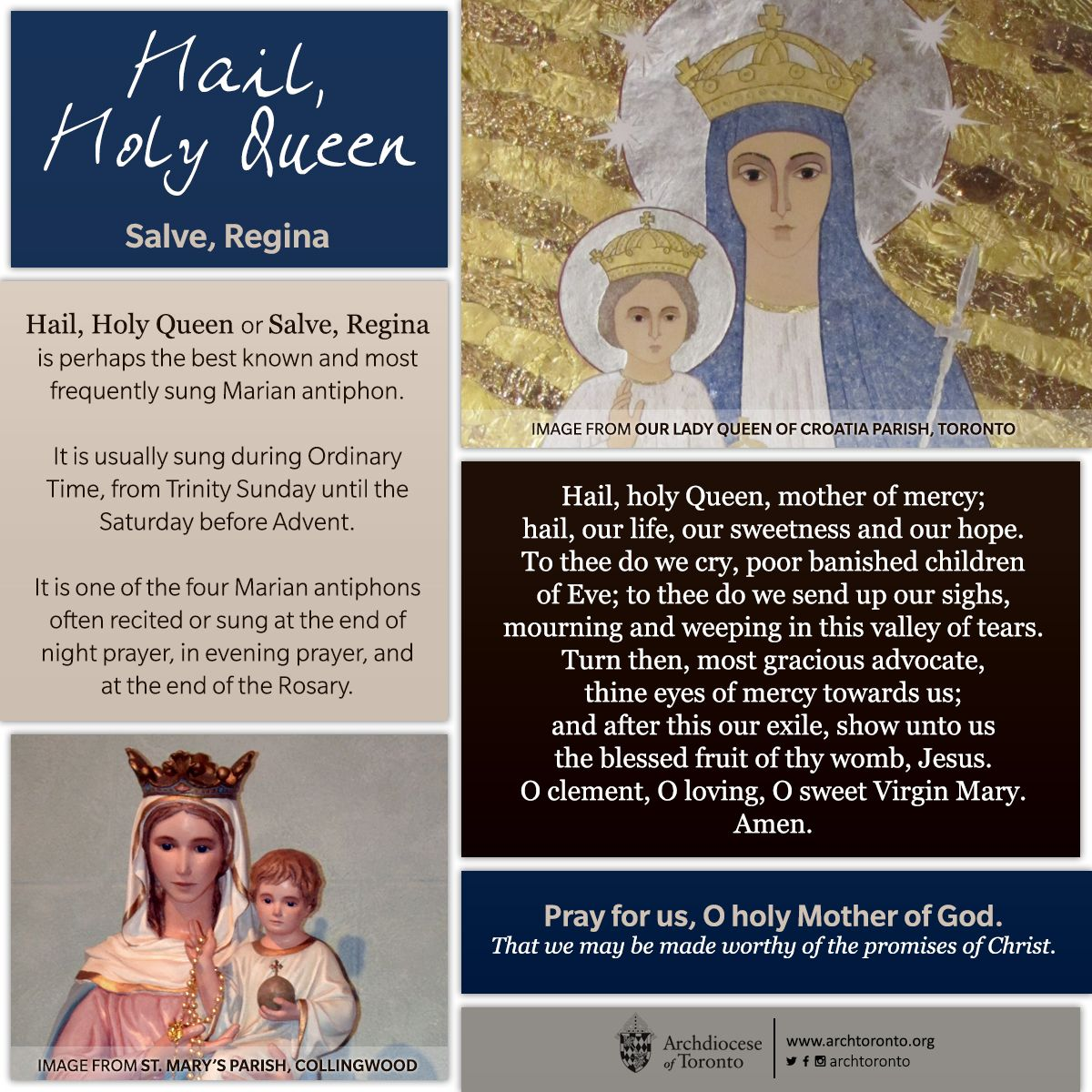 All About Hail U00 Holy Queen Salveregina Monthofmary