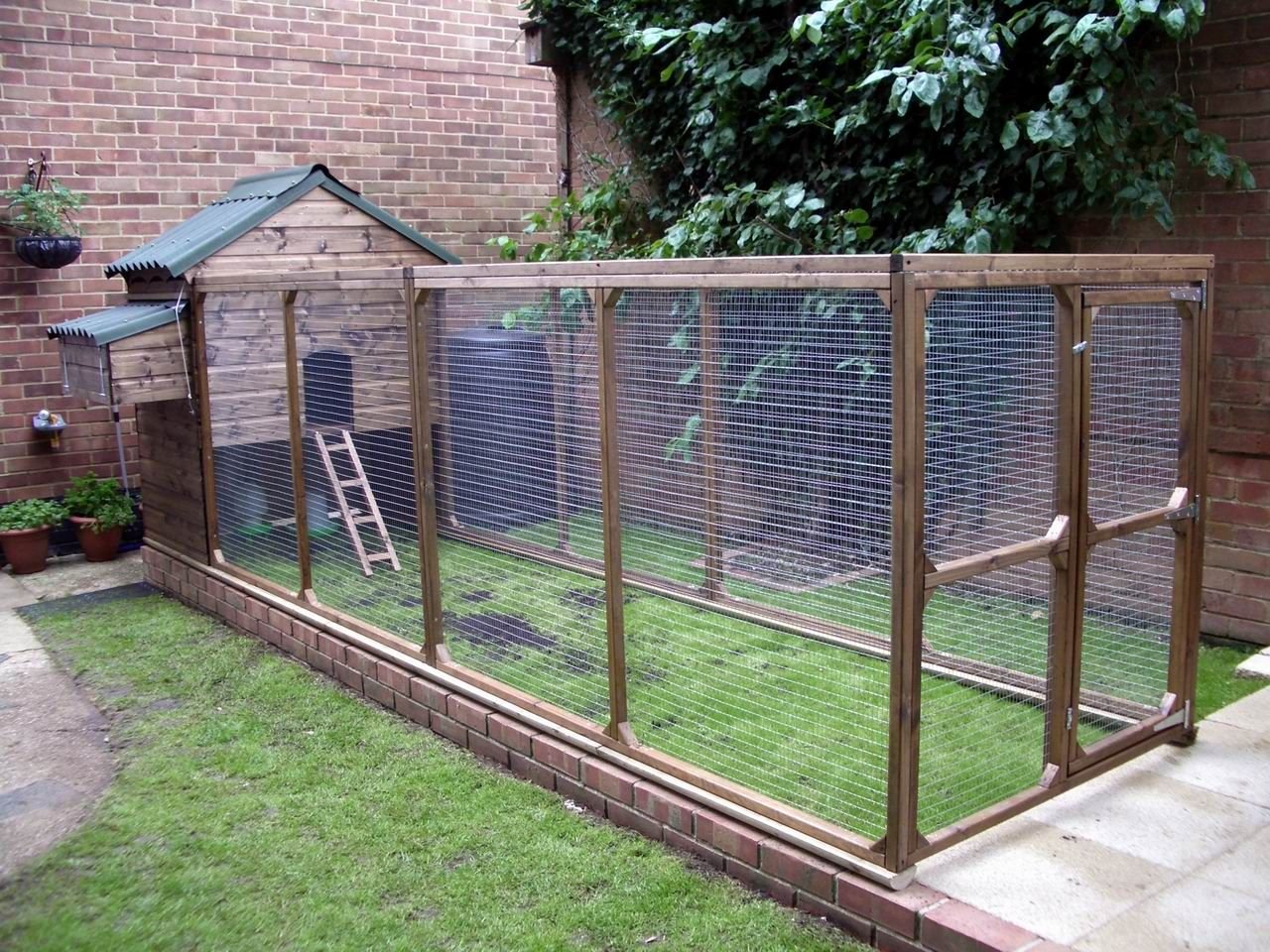 William chicken house and chicken run with fully boarded for Chicken coop size for 6 chickens
