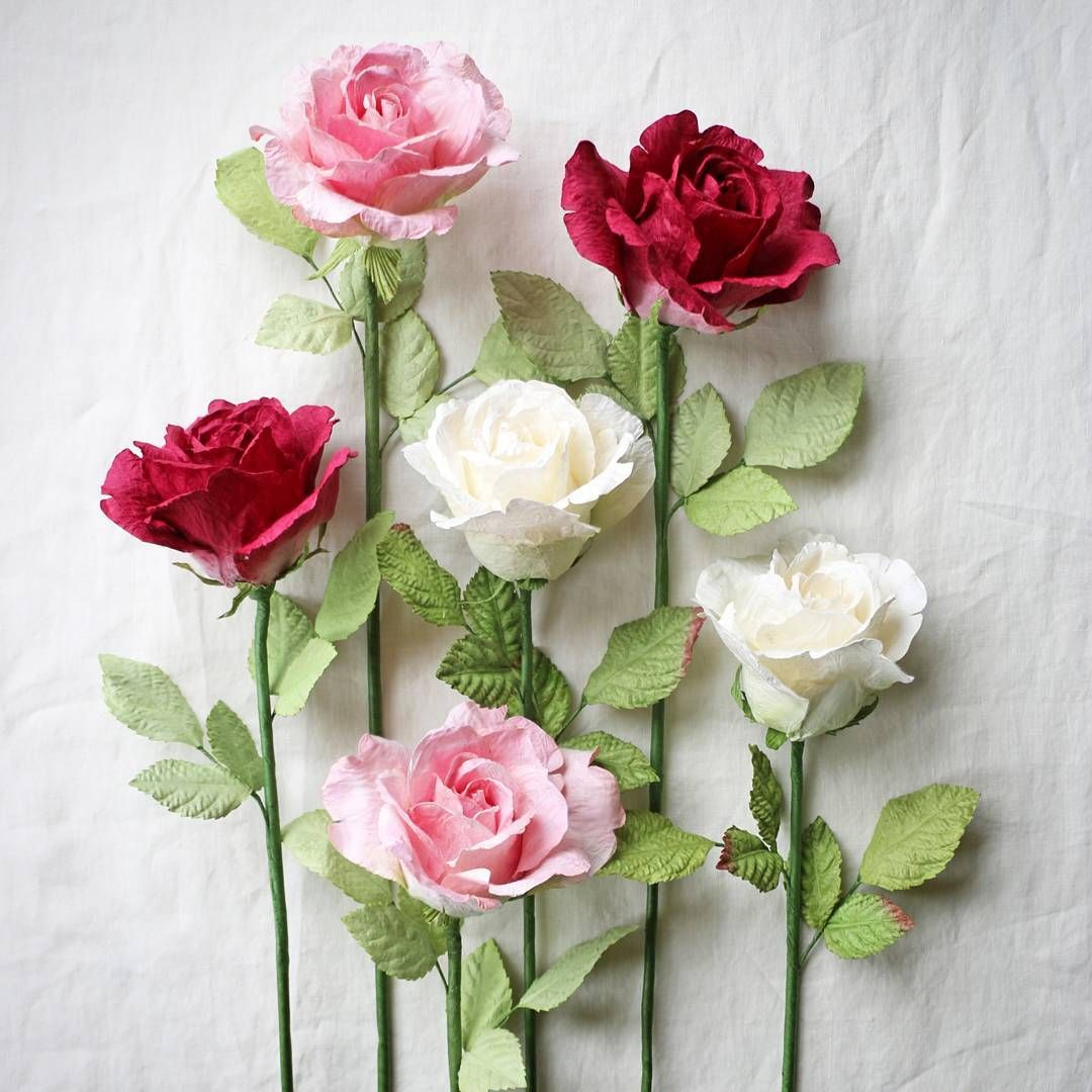 Paper Roses Papertree Paper Flowers Pinterest Paper