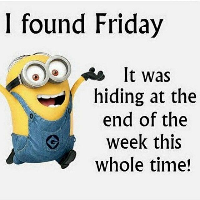 funny minion quotes tumblr - Google Search | Friday ...