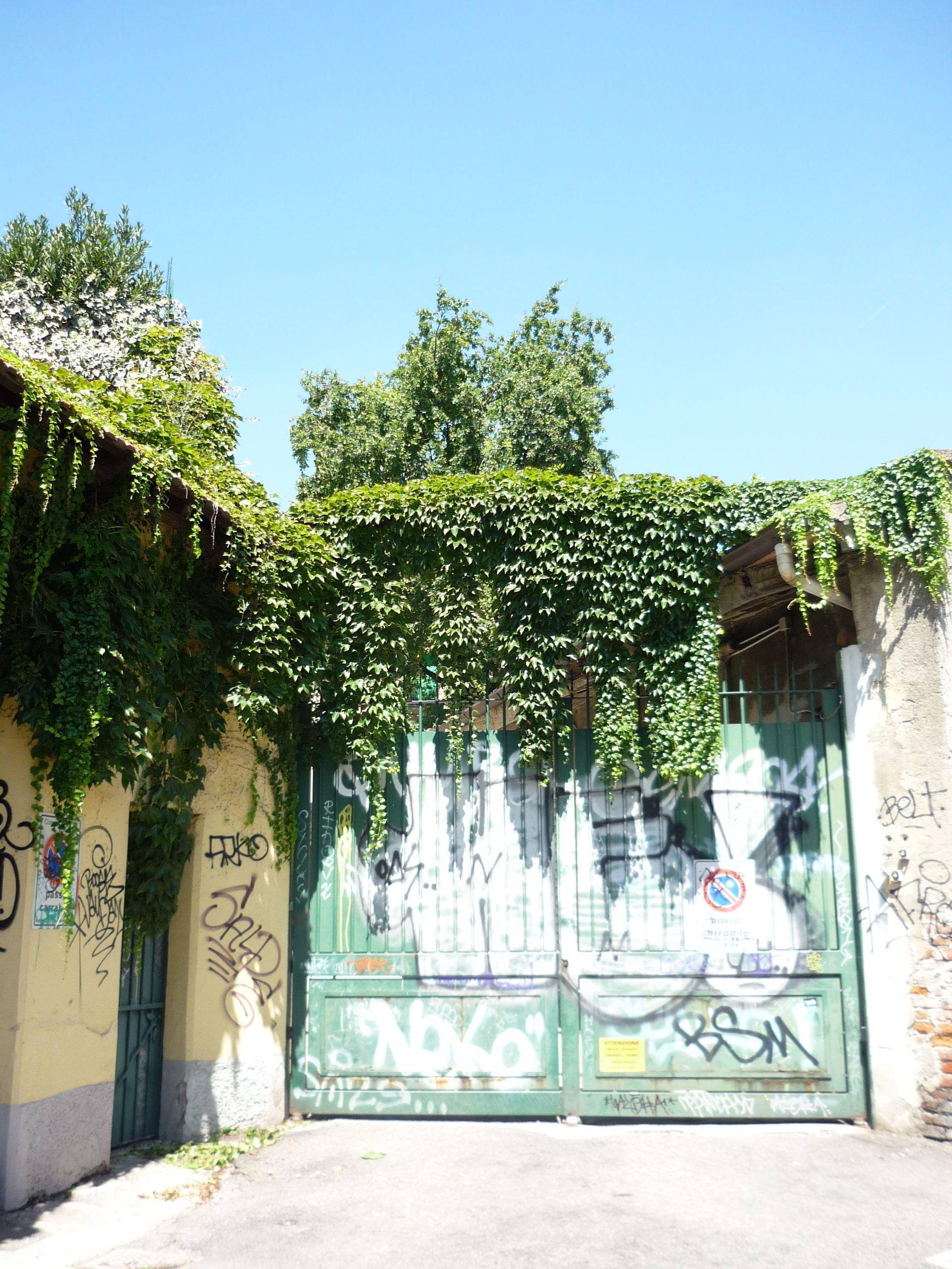 Green gate - Milano | Porte & finestre | Gate, Fruit, Green