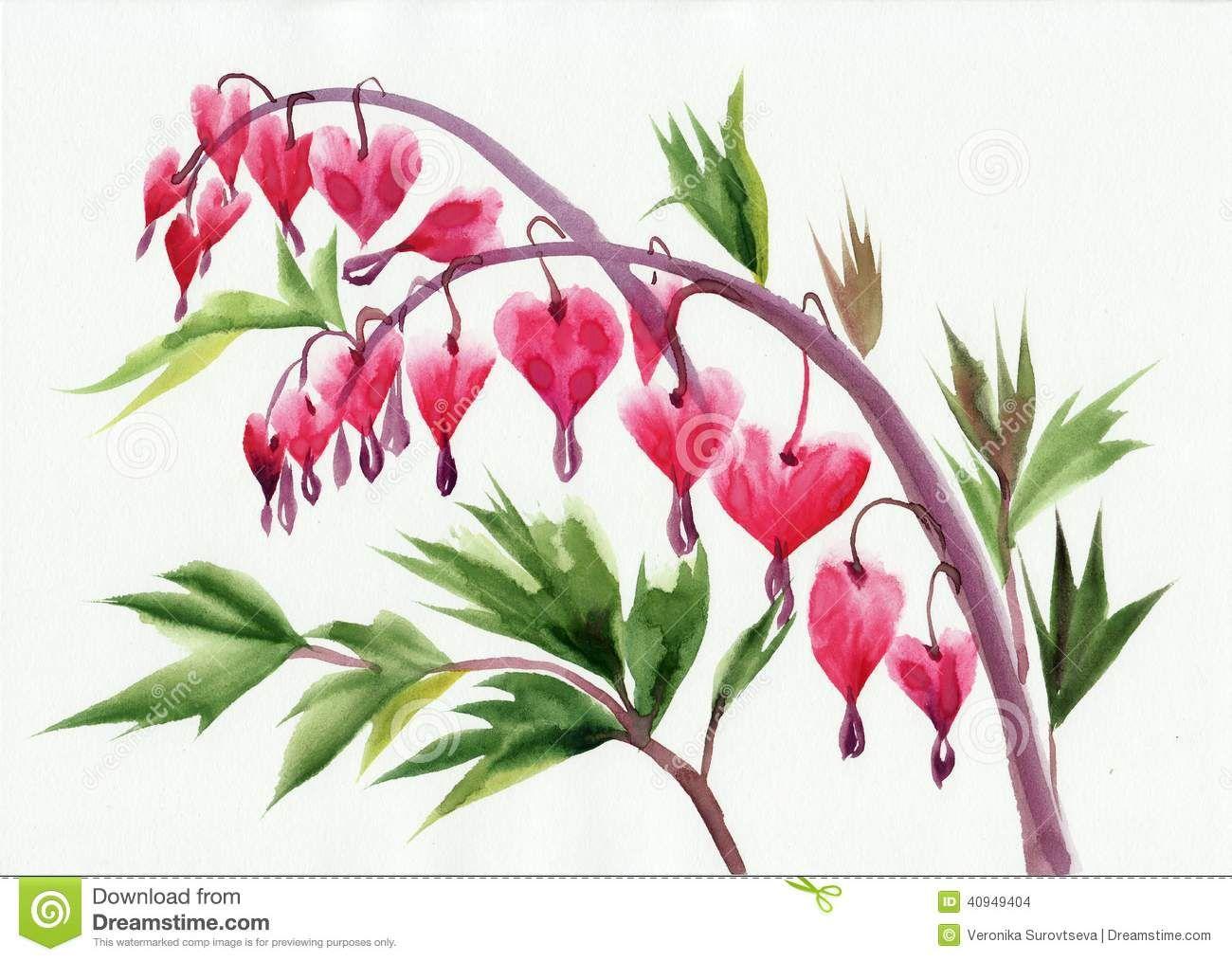 Bleeding Heart Flower Tattoo Watercolor original style