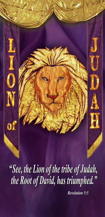 Lion Of Judah Banner G1715 1 Bannerandflags4u On