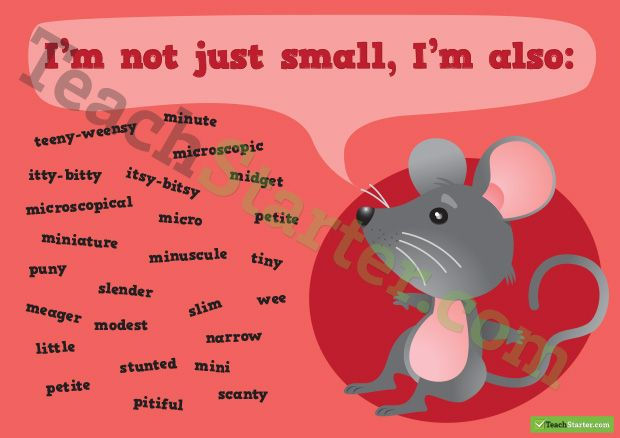 Other words for Small Synonym Poster | Writer's Block