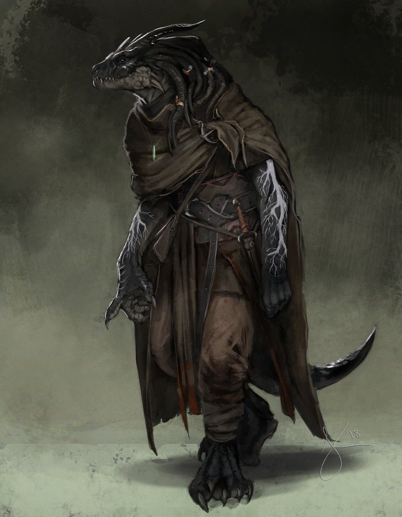 Pin by Amanda Kuhns on D&D Character Art - Dragonborn and Lizardfolk