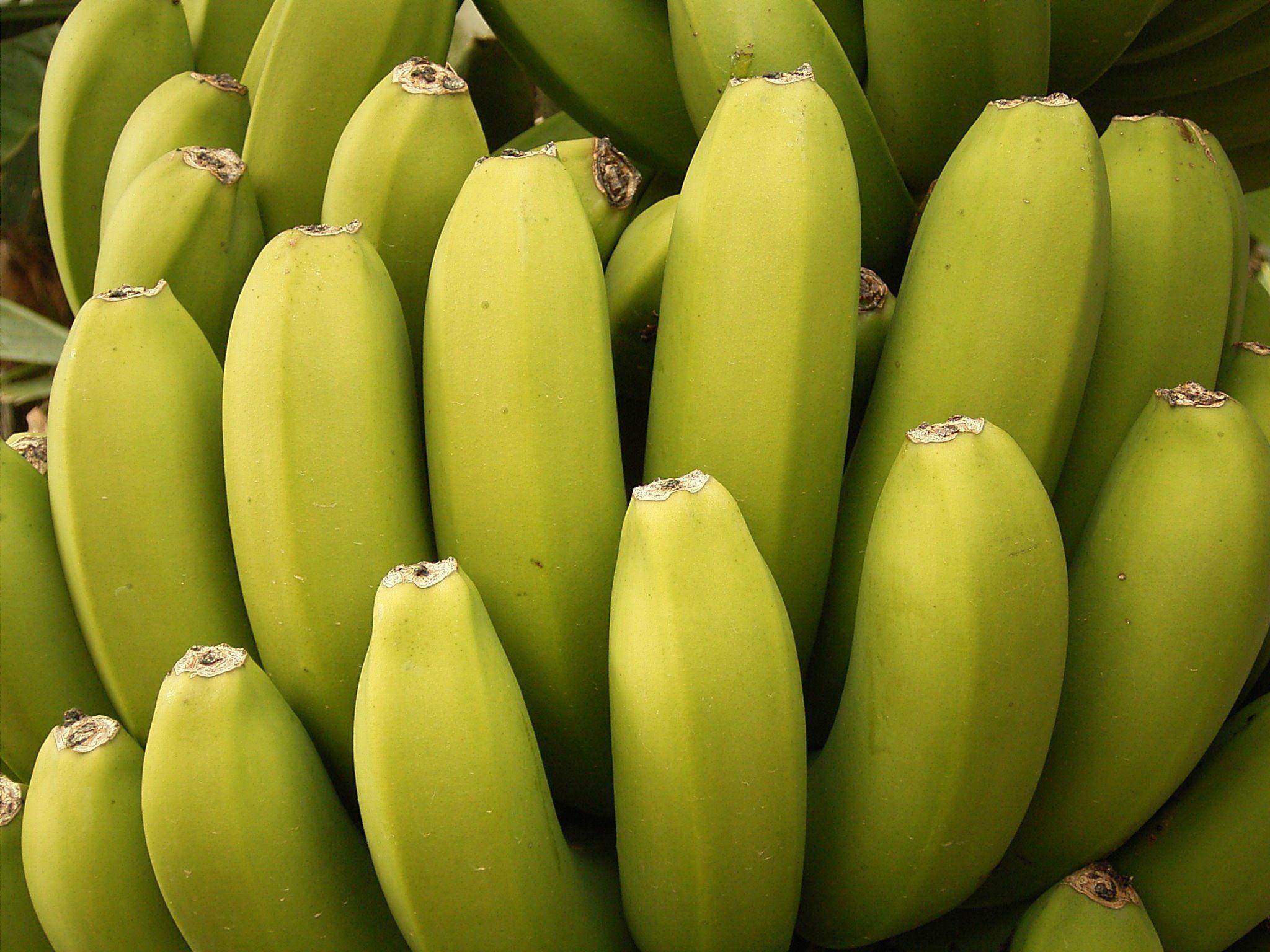 banana hd desktop wallpapers | wallpapers | pinterest | bananas and