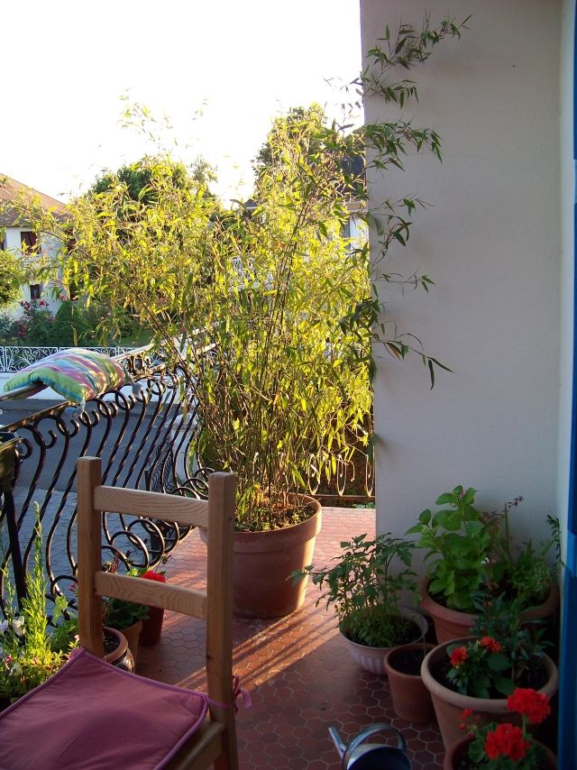 Bamboo as a balcony screen ideas with plants, mats and