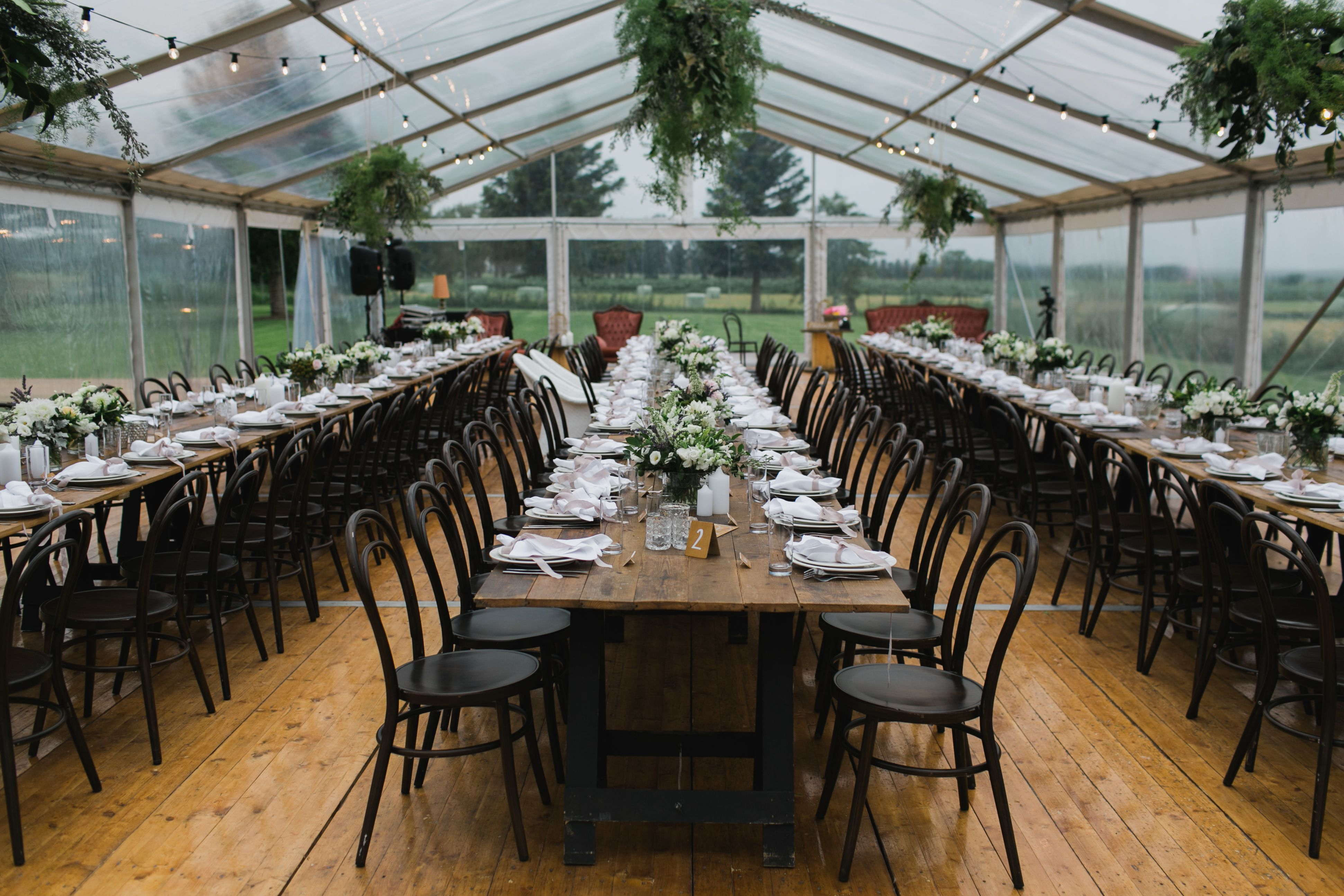 10m Clear Roof Marquee Walnut Bentwood Chairs Vintage