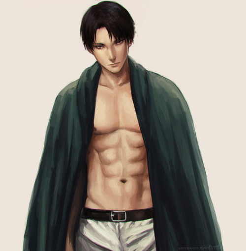 Attack On Titan Levi, Captain