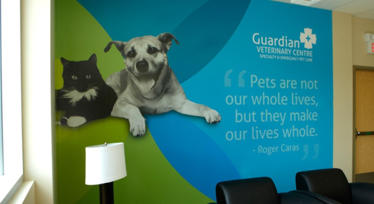 Guardian Veterinary Centre 24 hour Emergency Clinic and