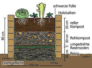 Hochbeet Anlegen Garten Vegetable Garden Garden Und Veg Garden