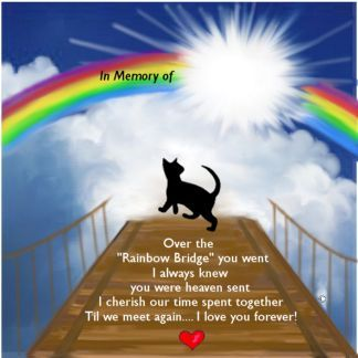 Pin by Frank Rossi on More Dog Quotes   Pinterest ... Rainbow Bridge