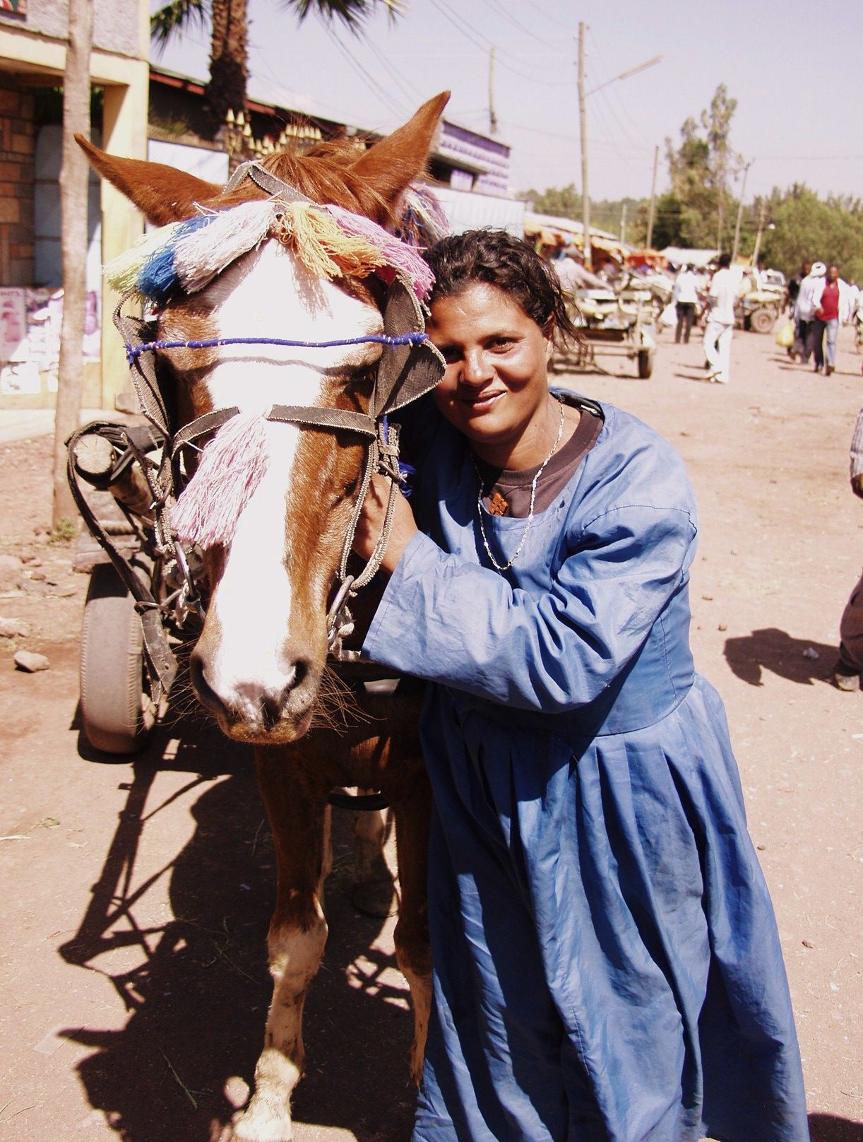 Ethiopia is a country with over 2.5 million horses that
