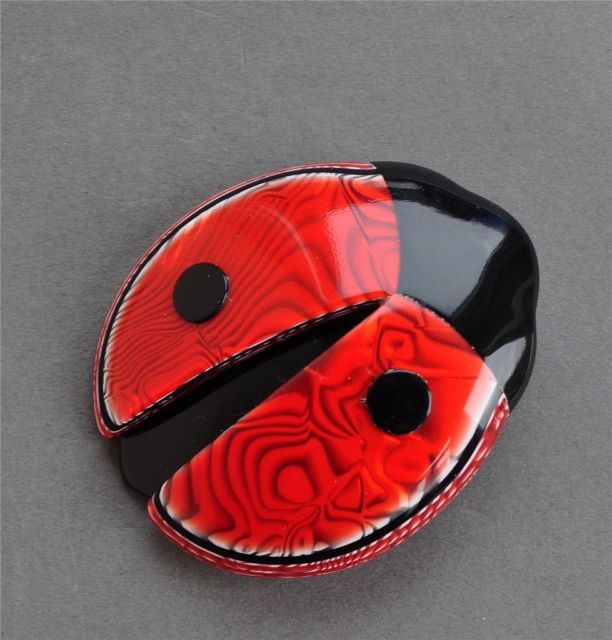 Marbled red and black ladybug
