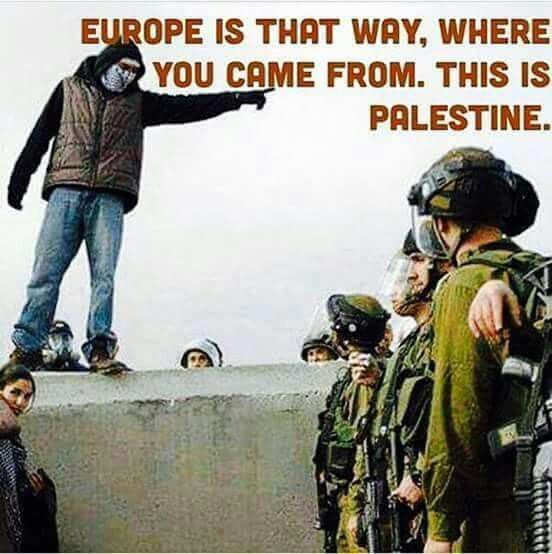 Httpwww Overlordsofchaos Comhtmlorigin Of The Word Jew Html: Israelis Are Zionists From Europe & Brooklyn. Palestine