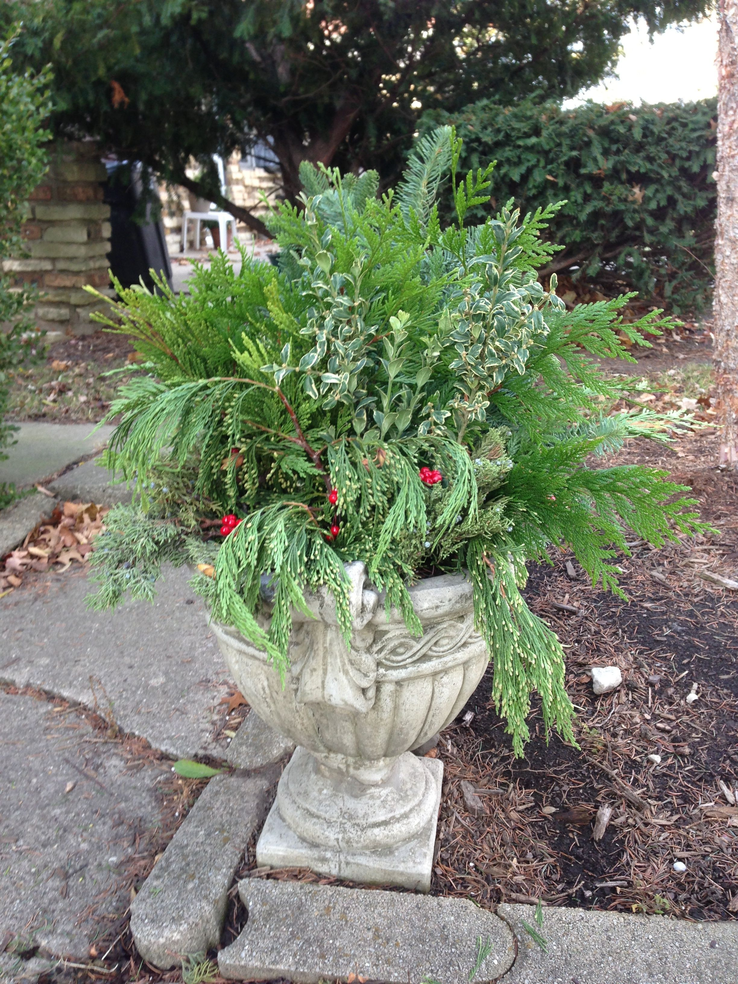 Decorate pots that held summer flowers with evergreens for the winter. Home Depot and places ...