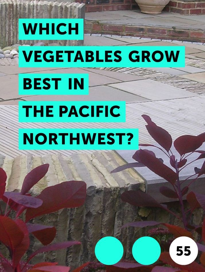 Which Vegetables Grow Best in the Pacific Northwest?